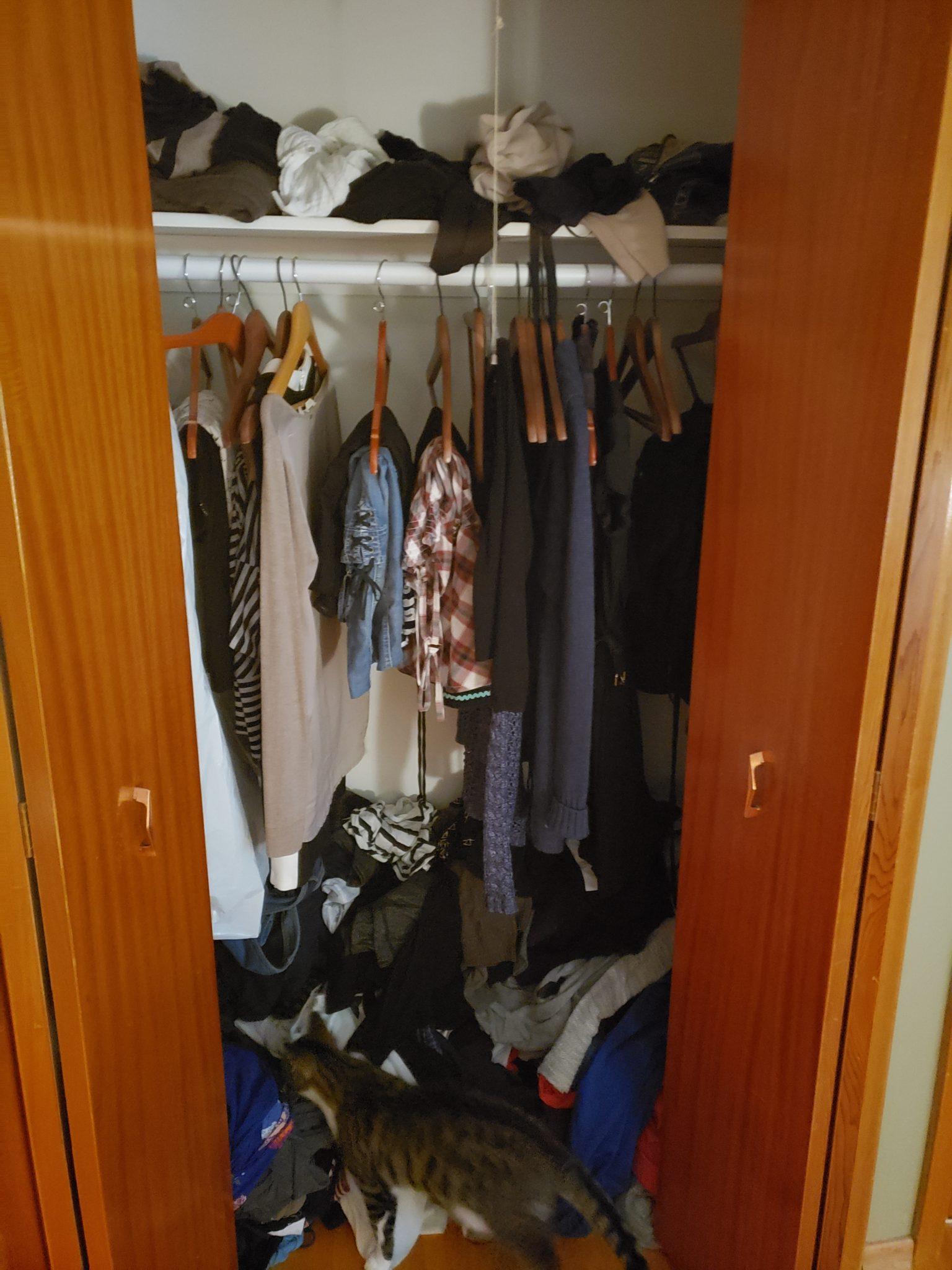 Bedroom closet - Before