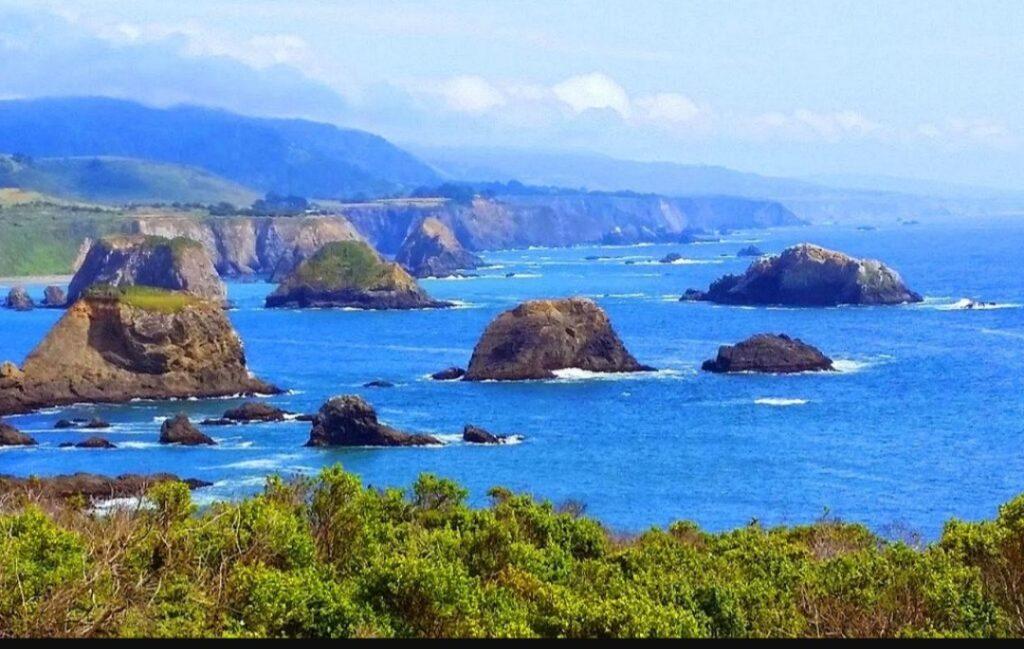 NG Movers - Bodega Bay