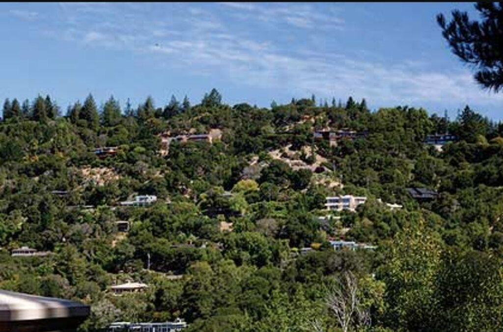 Kentfield, Marin County - Moving Day