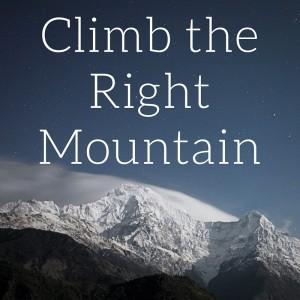 Climb the Right Mountain