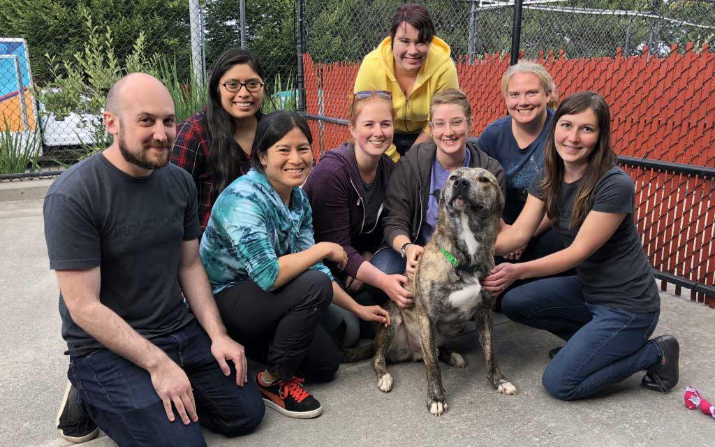 Volunteering Oregon Humane Society
