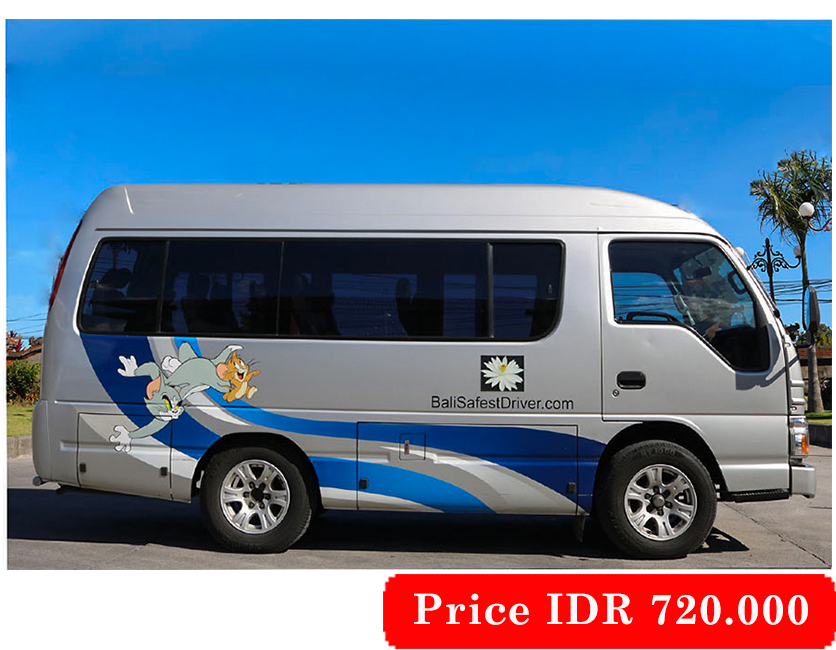 3. Isuzu Elf 10 Seats