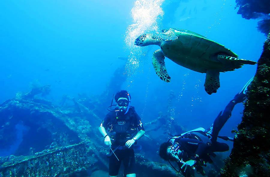 Bali Safest Driver Diving at Tulamben Tour above the USSLibertyshipwreck