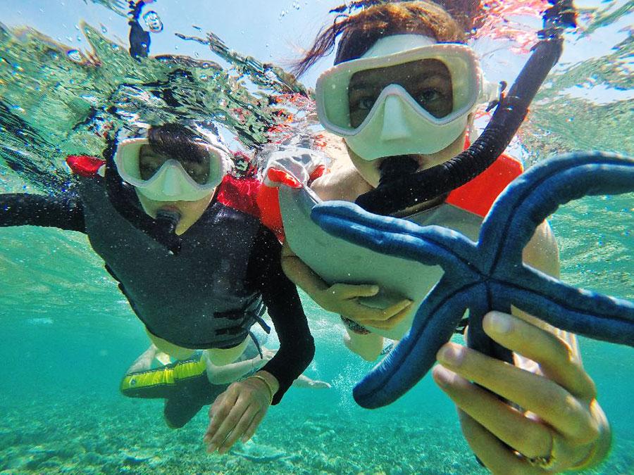 Bali Safest Driver Snorkling at Menjangan Island - Bali Driver