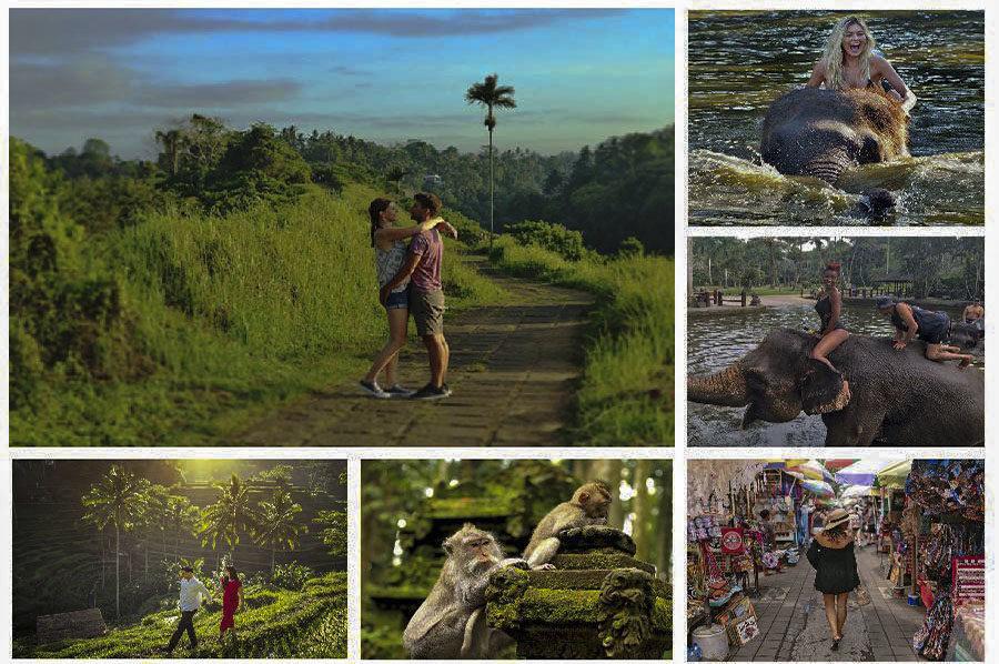 Campuhan Ridge Walk, Mason Elephant Ride, Tegalalang and Monkey Forest