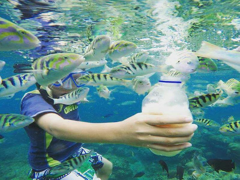 Snorkling at Amuk Bay Combination - Bali Safest Driver - Bali Driver