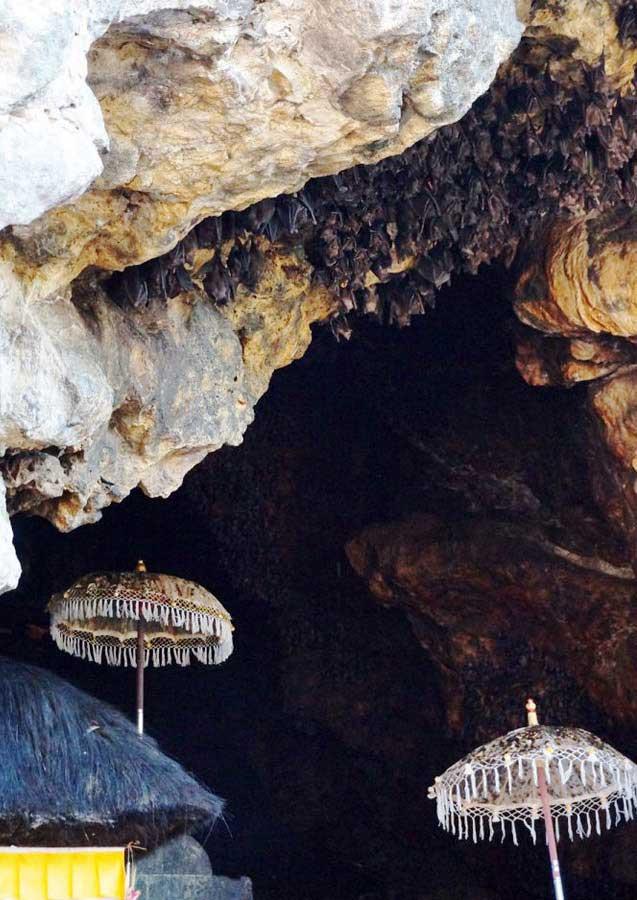 Bali Safest Driver Bat Temple