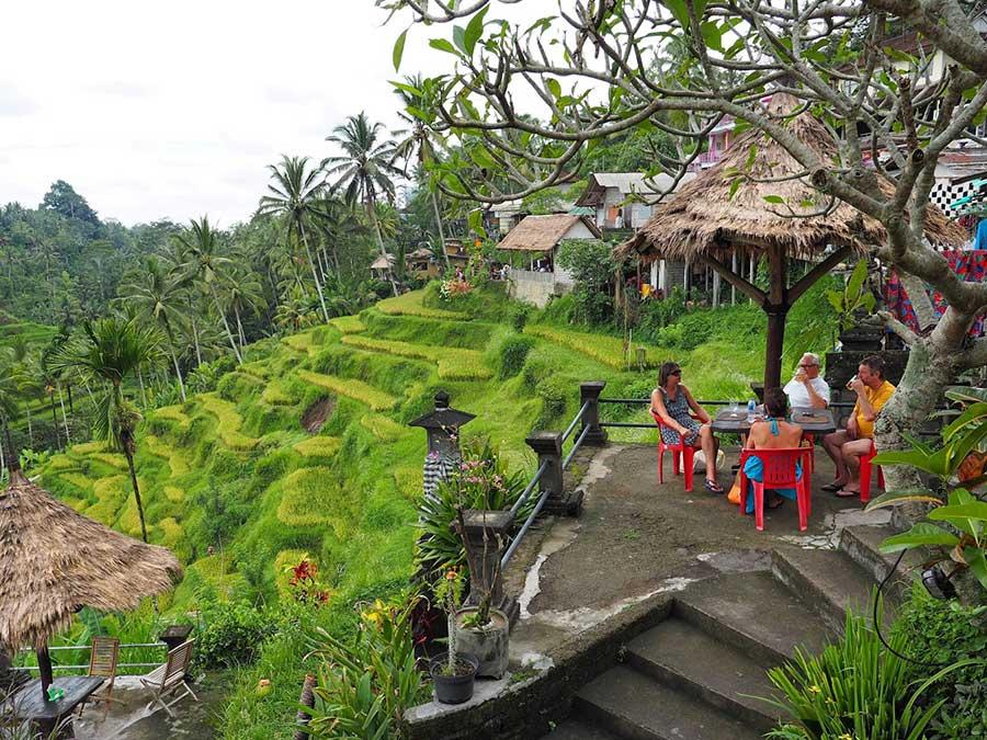 Tegalalang Rice Terrace Bali A1 Driver Tour