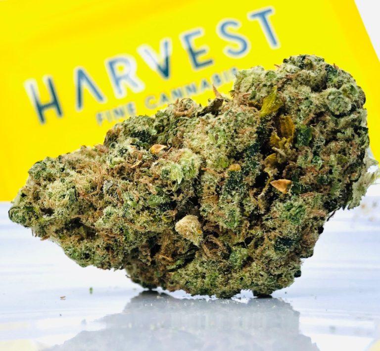 Sour Diesel by Harvest
