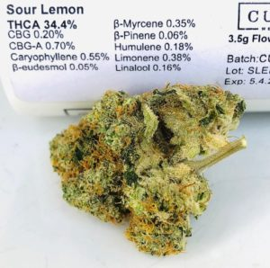 sour lemon by curio batch 2 terps