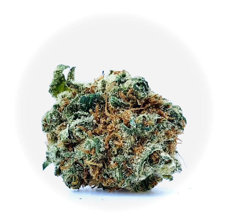 bud of angus strain with bright amber colored stigma and crystalline trichomes