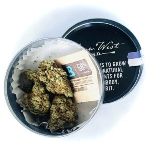 a look at what's inside a grow west eighth container