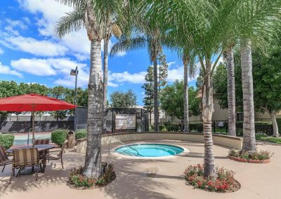 Distant photo of jacuzzi surrounded by palm trees and a shaded table