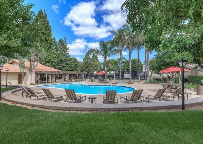 Distant view of the pool surrounded by trees, lounge chairs and grass behind area