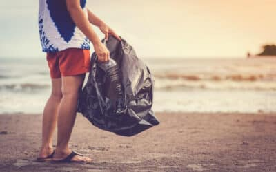 Join Our Park and Beach Cleaning Campaign!