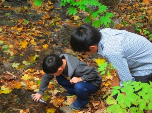 Sunday school students from St. Clement's taking samples from Coleman Creek, right near the church.