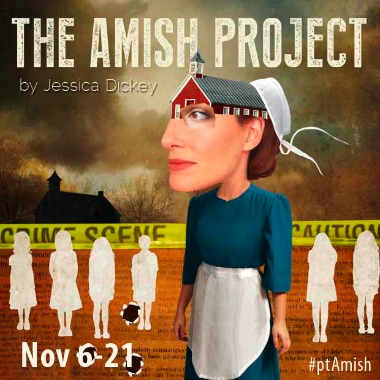 theamishprojectinside