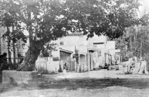 This picture of Gastown was taken in 1870. City of Vancouver Archives: AM54-S4-: Dist P11.1