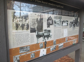 This presentation at Douglas Park tells stories of South Cambie in the early days.