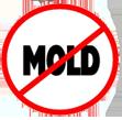 No Mold