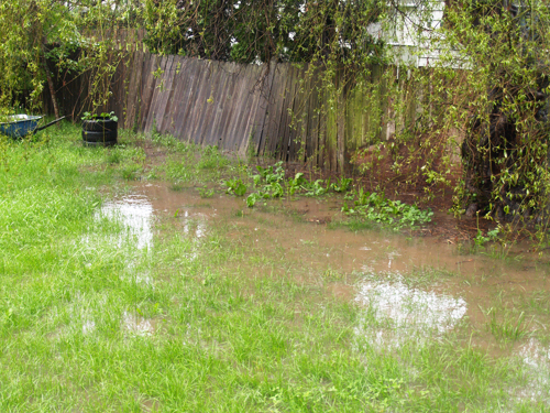Easy Strategies For Maintaining Your Home Drainage Systems