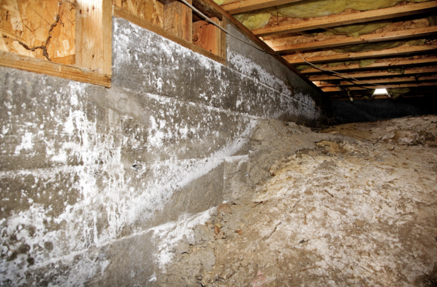 SIGNS YOU NEED CRAWL SPACE WATERPROOFING