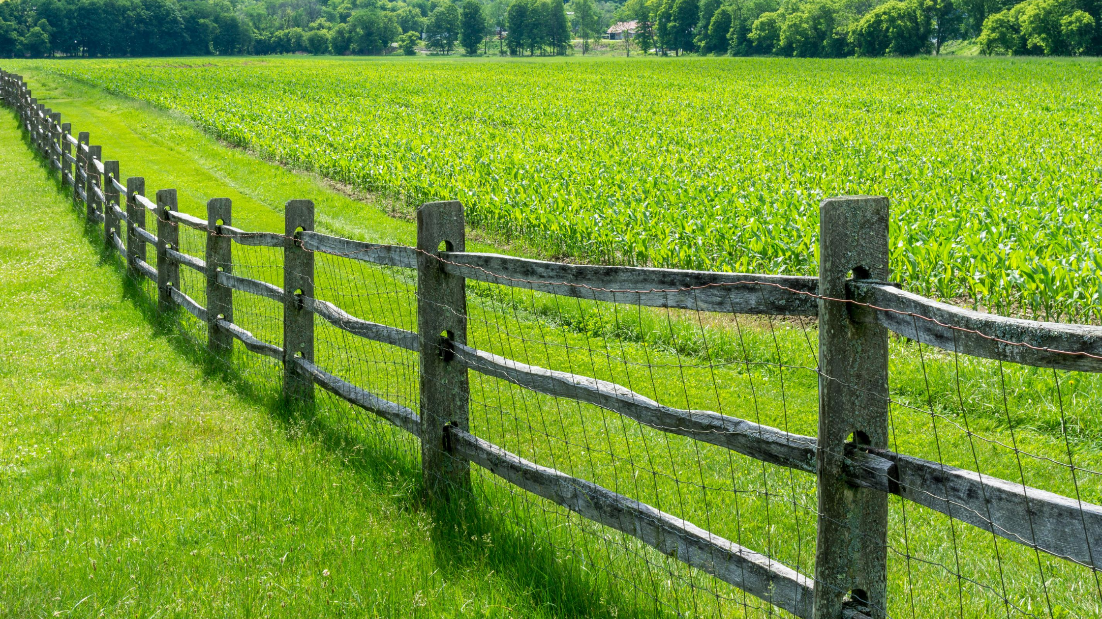 Fencing-in or fencing-out?