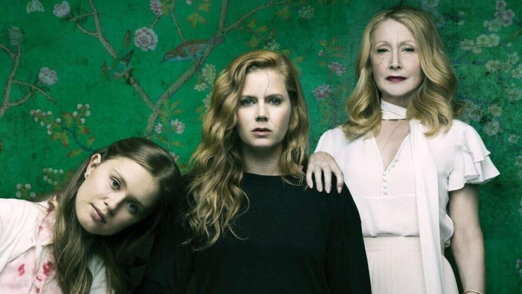 Best series to binge watch, girls night, Sharp Objects