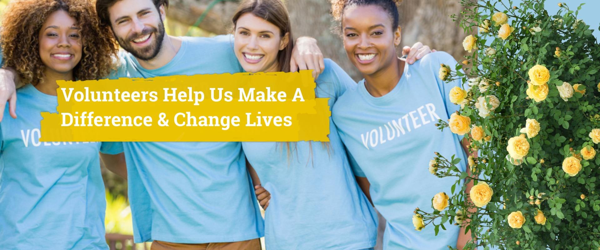 WSP - Get involved