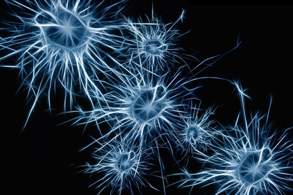 Brainspotting Trauma Therapy