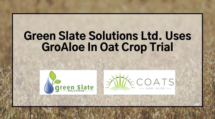 GroAloe in Oat Crop Trial