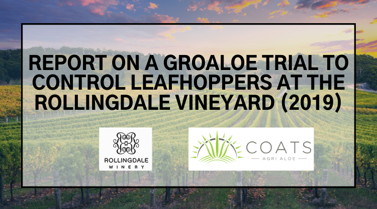 REPORT ON A GROALOE TRIAL TO CONTROL LEAFHOPPERS