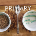 Primary Course Fees