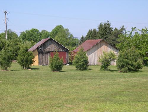 Lumber Camp Buildings