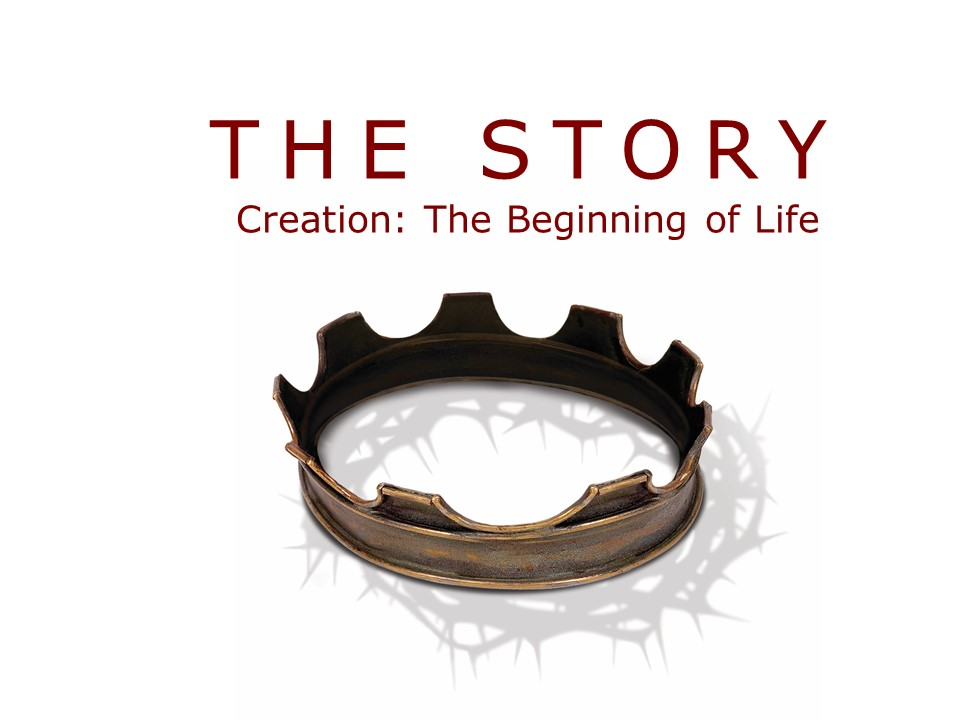 The Story: Creation...The Beginning of Life Image