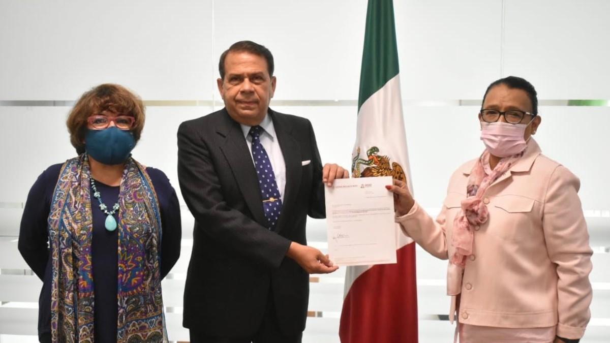 Salvador Gómez Meillón API Manzanillo