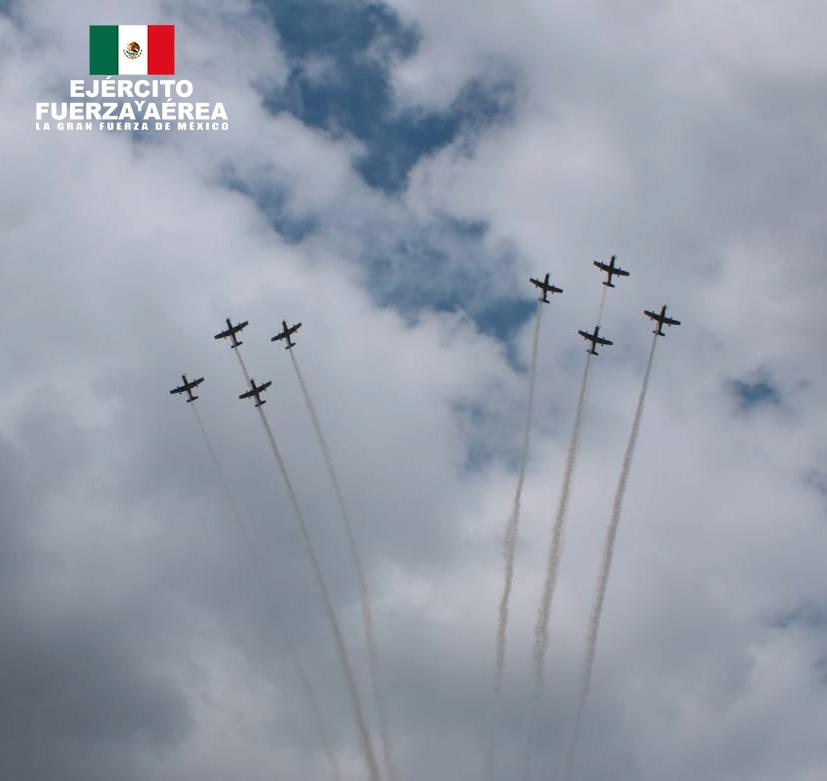 Fuerza Aérea en el Desfile militar 2020