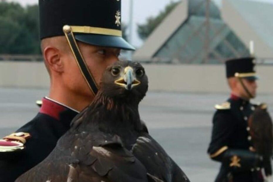 SEDENA Heroico colegio Militar