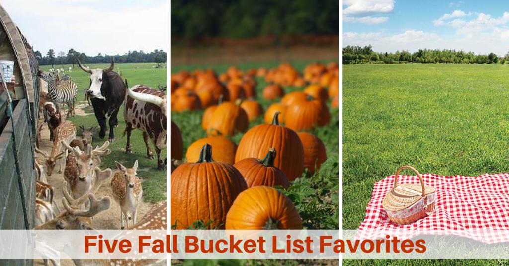 Fall Bucket List Five