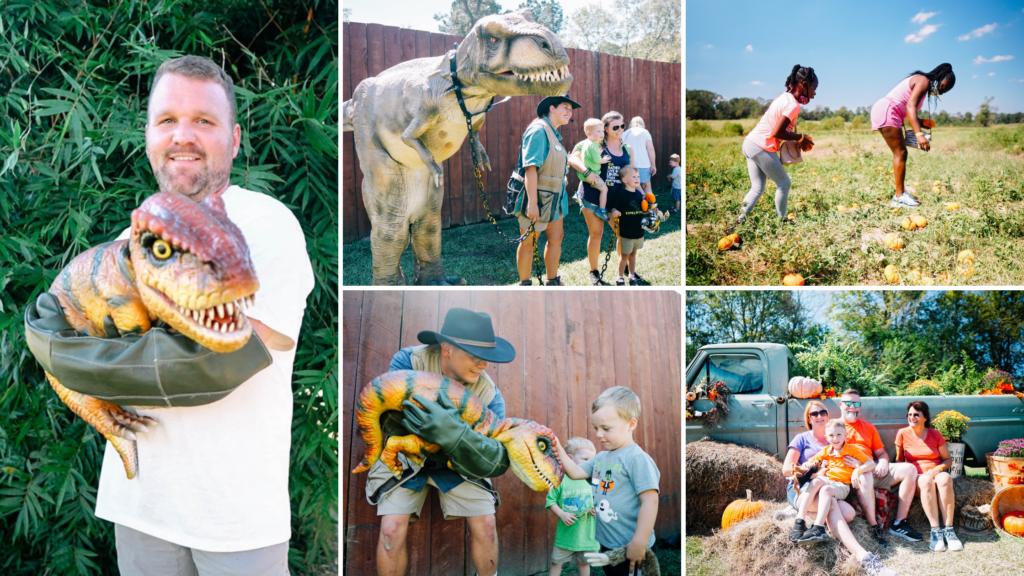 Barn Hill Preserve Pumpkin Patch Dinosaurs