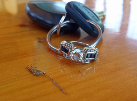Lost Ring Found at Castle Rock Lake
