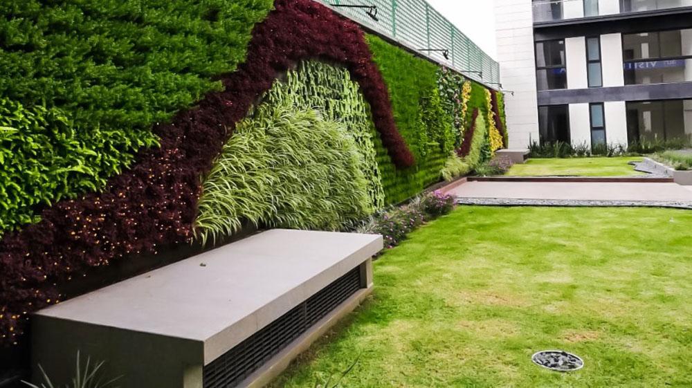 Azoteas Verdes y Muros Verdes