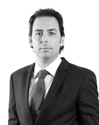Retrato do associado Flavio Mifano