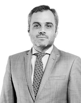 Retrato do associado Rogério Fernando Taffarello