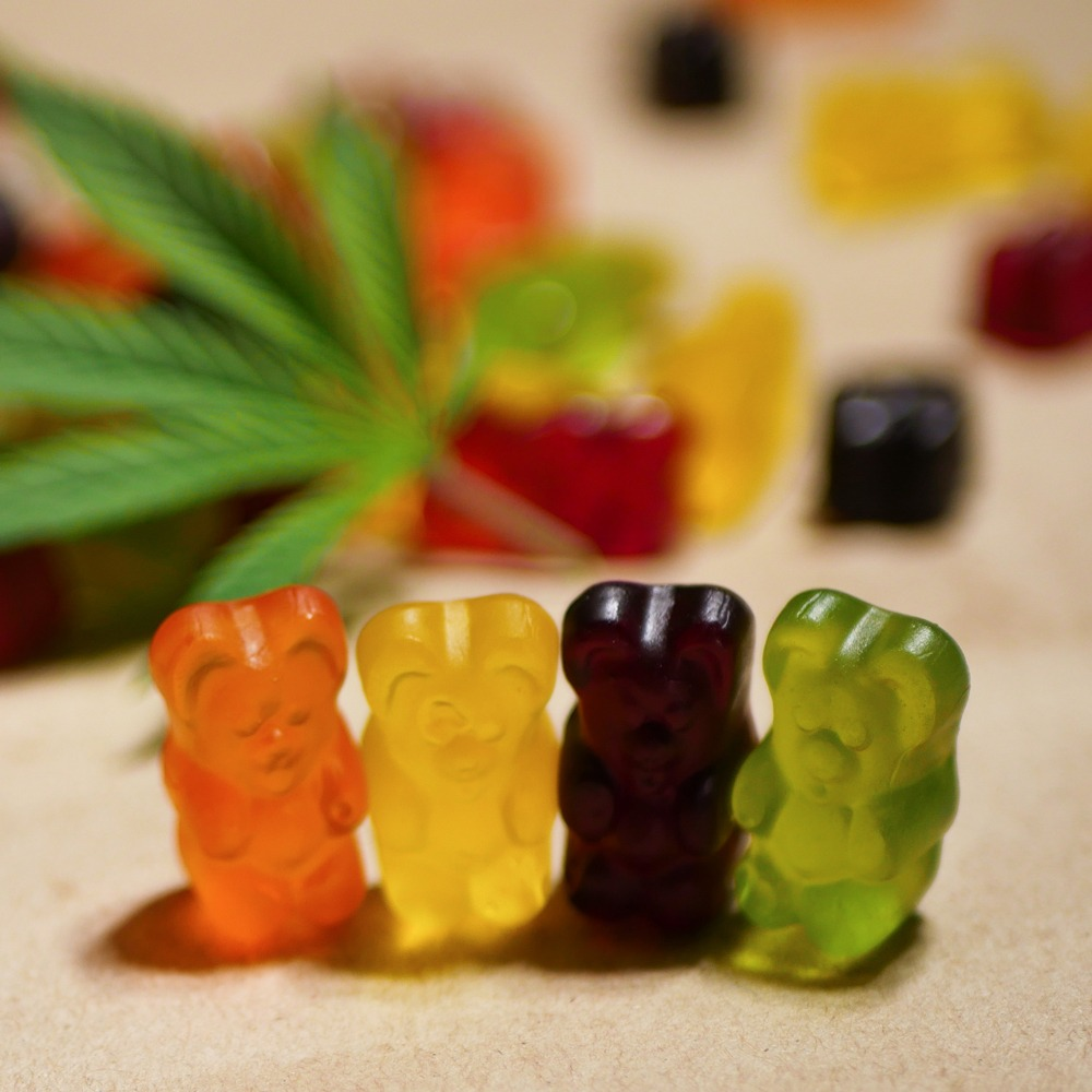 marijuana edible gummy bears givingtreedispensary.com