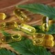THC capsules sit on a wooden table as Giving Tree Dispensary explains what you can expect from their product