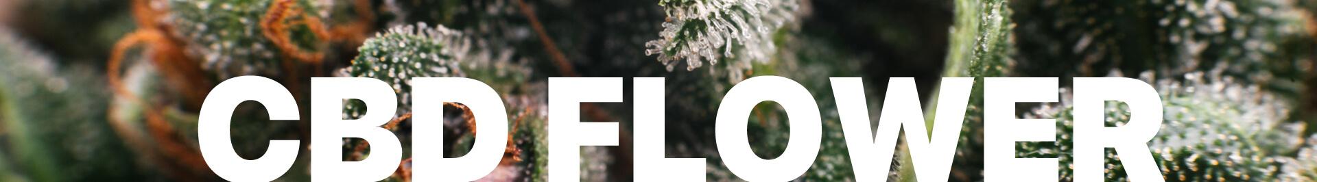 Buy Habit CBD Flower