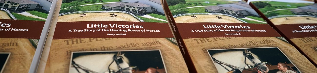 Little Victories: A True Story of the Healing Power of Horses