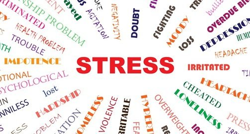 The Secret to overcoming your Stress
