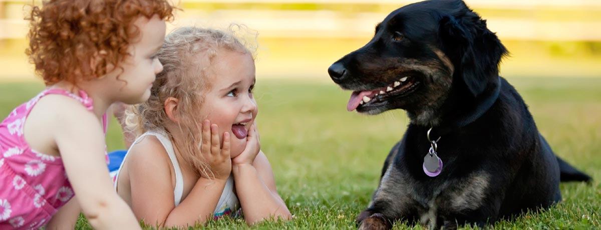 childrens pets